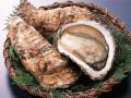 锅煽海蛎子